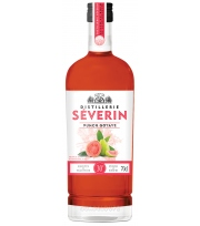 Severin - Punch Goyave